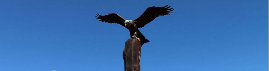 Wisconsin - La Crosse - Riverside Park002a Eagle.JPG