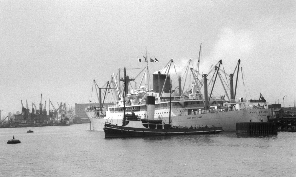Port_Melbourne_-_Prizeman_-_1950s_Hull_Docks_-_StS_.jpg