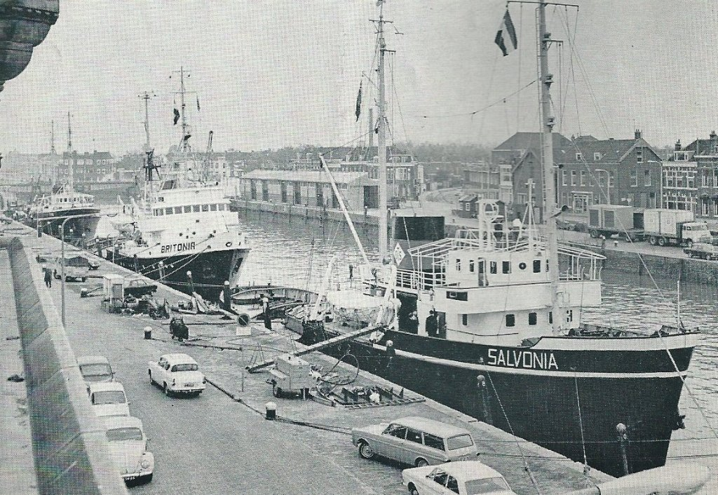 Salvonia_Britonia at Maassluis.jpg