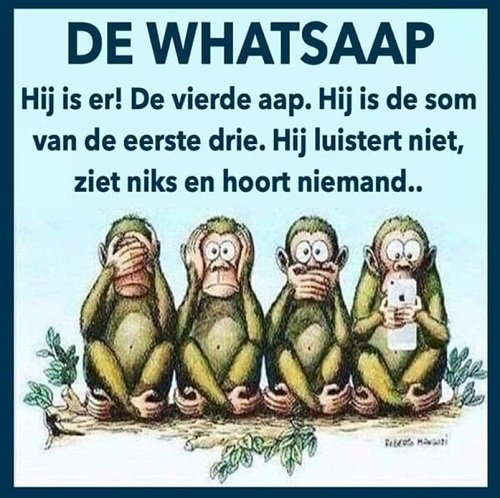 whatsaap.jpg